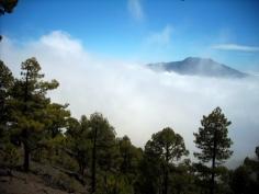 Pico Bejenado,La Palma -opis szlaku http://wp.me/p5IYcn-3h