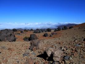 Huevos del Teide