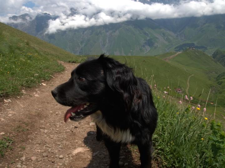 Gruzja trekking