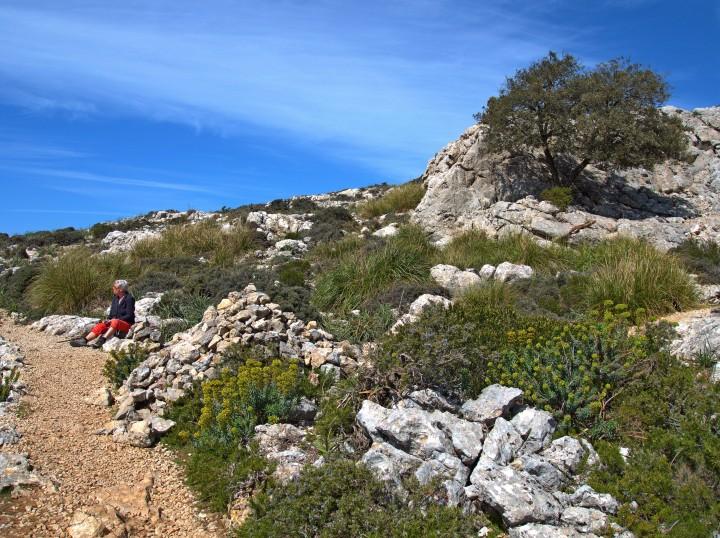Puig des Teis szlak
