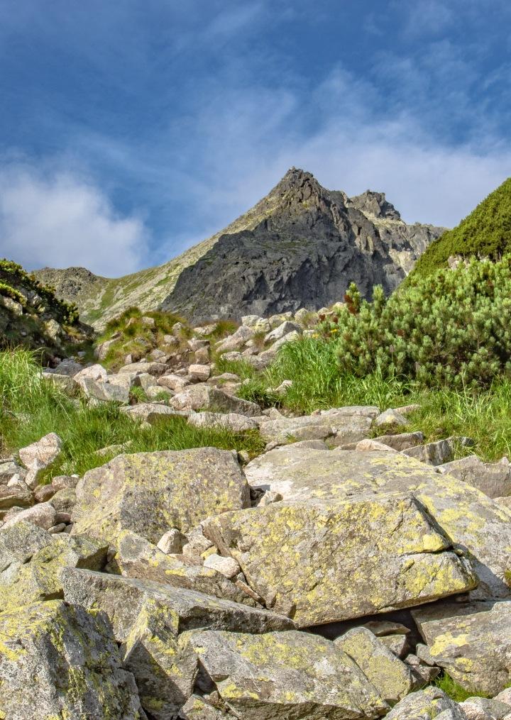 Dolina Staroleśna szlak