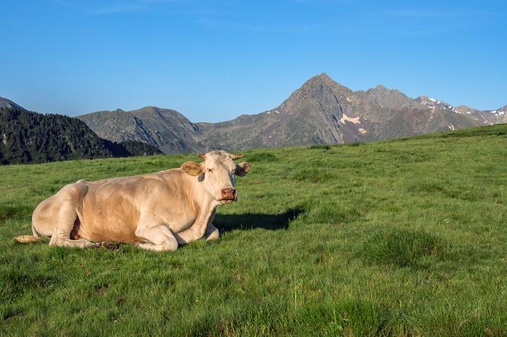 GR10 Bastan szlak Pireneje