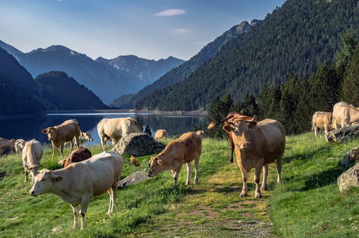 Lac l'Oule Pireneje szlaki