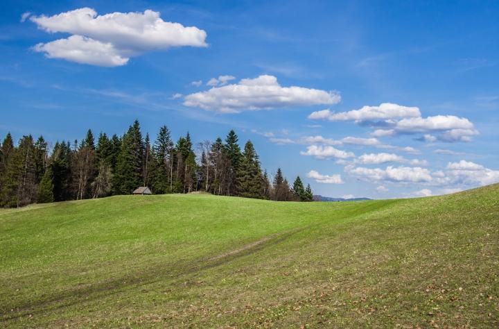 niebieski szlak Krościenko Czorsztyn wiosna