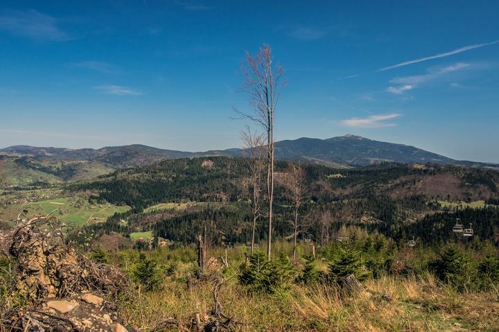 Babia Góra ze szlaku an Pilsko