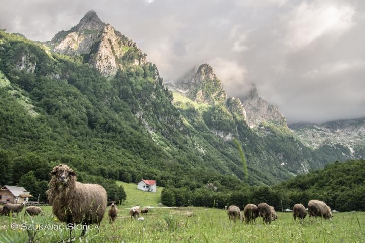 Czarnogóra, Prokletije, Dolina Grebaje
