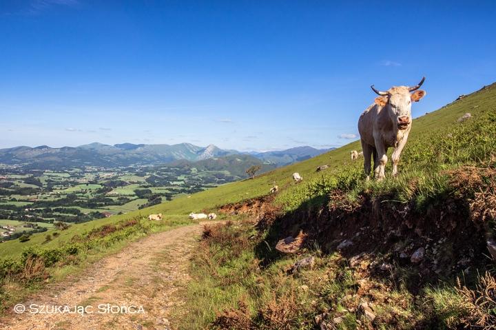 GR10 Saint Jesn Pied de Port szlak Pireneje