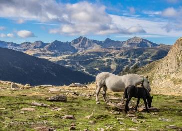 Andorra-cabana-sorda