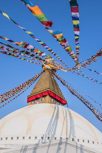 wielka stupa